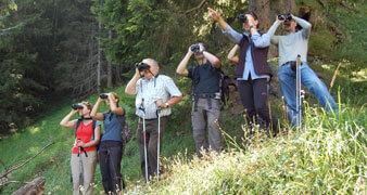 Menschen mit Fernglaesern beim Nature Watch
